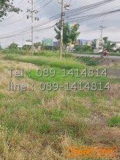 ขายที่ดิน 52 ไร่ ติดกับบริษัทไทยมิตซูวา ลาดหลุมแก้ว จังหวัดปทุมธานี
