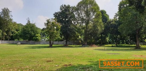 ที่ดินโฉนด4-3-13 ไร่ล้อมรั้วคอนกรีตรอบ ทางเข้าวัดพระพุทธฉาย เมืองสระบุรี