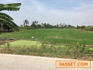 ขายที่ดิน 9 ไร่ ไร่ละ 12 ล้าน ถนน 345 ละหาร บางบัวทอง นนทบุรี