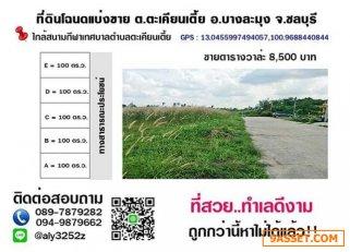 ที่ดินแบ่งขาย แปลงละ 100 ตารางวา ราคาเพียง 850,000 บาท ราคาถูกกว่าแปลงข้างเคียง