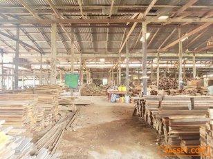 ขายด่วน ที่ดินพร้อมกิจการโรงไม้ พร้อมเครื่องจักร ราคาถูก บ้านกระทุ่ม  อ.เสนา จ.อยุธยา ใกล้โลตัสเสนา