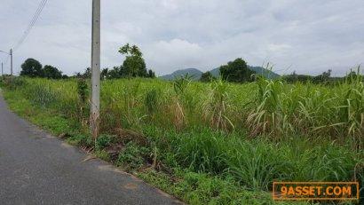ขายที่ดินสวย 17.5 ไร่ จ.ชลบุรี เหมาะกับการลงทุน สร้างหมู่บ้านจัดสรร