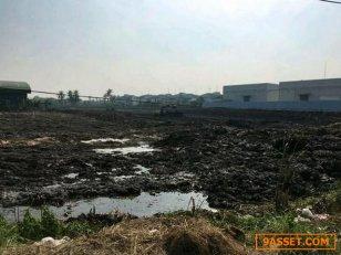 LS 447 ขายที่ดิน 4 ไร่ ติดถนนพุทธมณฑล สาย5 เหมาะทำโชว์รูม โกดัง ปั๊มน้ำมัน ใกล้ถนนบรมราชชนนี