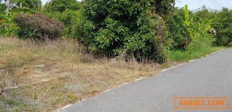 ขายที่ดินหน้าติดถนนดำหลังติดคลอง เหมาะปลูกบ้านพักผ่อนริมน้ำจ้า  โฉนดเนื้อที่ 271 ตรว.