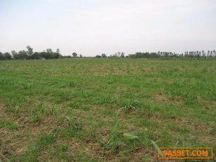 ขายที่ดินเปล่าทำการเกษตร 90 ไร่ 3 งาน นส.3 ก ด่านมะขามเตี้ย จ.กาญจนบุรี