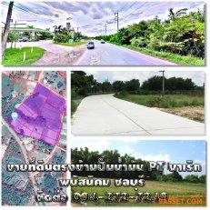 ขายที่ดินแปลงสวยเหมาะสำหรับการลงทุน ที่ดินติดถนนทางหลวงเส้นพนัสนิคม-เกาะโพธิ์ ตรงข้ามเป็นปั๊ม PTนาเริกใกล้ทางหลวง331