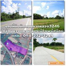 ขายที่ดินติดถนนทางหลวงแผ่นดิน3246 พนัสนิคม-เกาะโพธิ์ ใกล้ถนนทางหลวงเศรษฐกิจ331