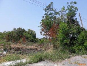 ขายที่ดิน หนองเสือ ธัญบุรี ปทุมธานี