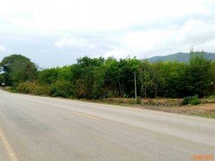 ขายที่ดิน31ไร่ (มีโฉนด) เจ้าของขายเอง ที่เชียงกลม อำเภอปากชม จังหวัดเลย 31 rai of land for sale (title deed), owner sold at Chiang Klom, Pak Chom District, Loei Province