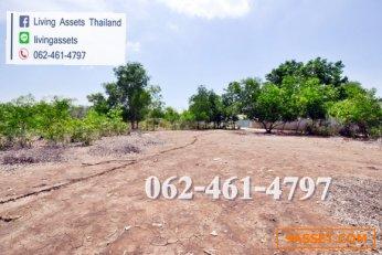 ขายที่ดิน 5 ไร่ แปลงมุม ถนนเลียบคลองสอง ซอยเอราวัณ ตำบลคลองสอง ปทุมธานี ธัญบุรี    บี 062-461-4797