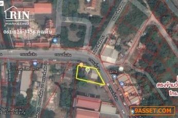 ขาย ] ที่ดิน 100 ตรว. ติดถนนเพิ่มสิน ตรงข้ามวัดออเงิน  061-828-3456  ต้น