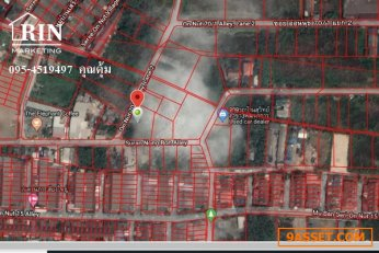 ขายที่ดิน 391 ตรว. ซอย อ่อนนุช 70/1 แยก 2 แขวงประเวศ เขตพระโขนง กรุงเทพฯ ติดต่อ คุณตุ้ม 095 4519497