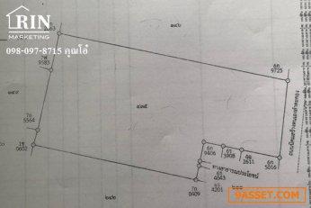 ขายที่ดินเขาใหญ่ติดถนน  ปากช่องต.หนองสาหร่าย อ.ปากช่อง จ.นครราชสีมาเนื้อที่ 16 ไร่  374 ตารางวา   098-097-8715