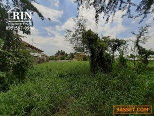 ขายที่ดินสาย 4 ใกล้พุทธมณฑล อยู่ในซอยหมู่บ้านปาริชาติ 095-587-0980