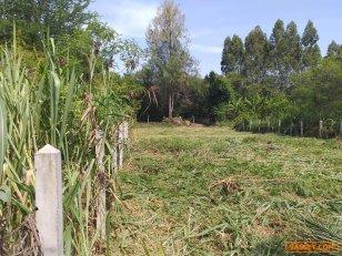 ขายที่สวย หลังวิทยาลัยเกษตรชลบุรี เนื้อที่190ตารางวา  ราคา 1.5 ล้านบาท  ค่านาย(100,000)