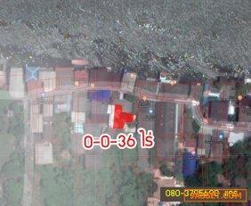 ขายด่วนที่ดิน+สิ่งปลูกสร้าง ริมน้ำเจ้าพระยา เกาะเกร็ด 0-0-36 ไร่ อ.ปากเกร็ด จ.นนทบุรี