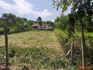 ขายที่สวย หลังวิทยาลัยเกษตรชลบุรี เนื้อที่190ตารางวา  ราคา 1.5 ล้านบาท