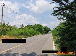 ขายด่วน ที่ดินติดถนนฤชุพันธ์ ไทรน้อย ขายถูกกว่าราคาประเมิน 50-2-69 ไร่ ไร่ละล้าน เท่านั้น 098 8746992 นุ้ย
