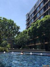 ขาย D Condo Creek Phuket อาคาร B ชั้น 3 วิวสระน้ำบรรยากาศร่มรื่น 29 ตารางเมตร