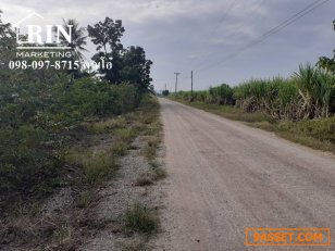 ขายที่ดินติดถนนพร้อมสวนผลไม้น้อยหน่า ปากช่องเขาใหญ่ 098-097-8715 คุณโอ๋