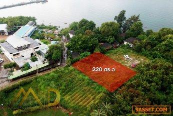 ขายด่วน!!! ที่ดินเปล่าใกล้ทะเลบางแสน อ่างศิลา เมืองชลบุรี ซ.ใบบัว ตรงข้ามศาลเจ้านาาจา ขนาด 220 ตร.ว