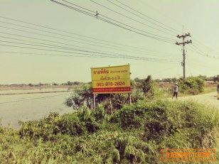 ขาย ที่ดินเปล่า ต่ำกว่าราคาตลาด ทิศใต้ ติดถนนทางหลวง 3263 สายบ้านสาลี-อยุธยา อ.เสนา จ.อยุธยา