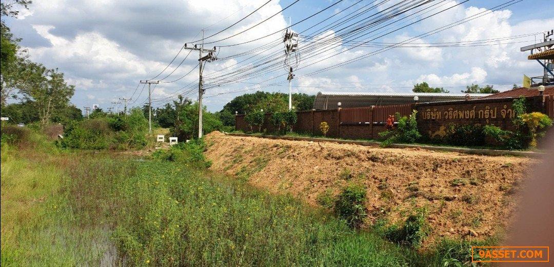ขายที่ดินสวยติดถนน ถูกมาก ควนรัง หาดใหญ่ (นี)089-964-1451