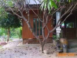 ขายบ้านพร้อมที่ดิน อำเภอท่ามะกา ต.หวายเหนียว กาญจนบุรี เนื้อที่ 154 ตร.ว.