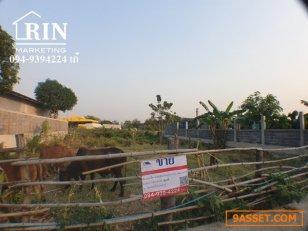 ขายที่ดิน 100 ตารางวา ใน ซอยศิริโรจน์ ตำบลละหาร อำเภอบางบัวทอง นนทบุรี 094-9394224 เก๋
