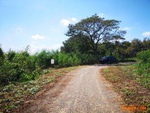 ขายที่ดินเปล่า ซ.บางเดื่อ 1 ใกล้แยกบางคูวัด เมืองปทุมธานี ปทุมธานี