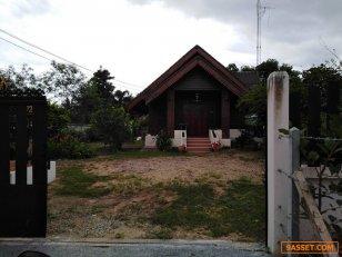 ขายบ้านเดี่ยว พร้อมเครื่องใช้ไฟฟ้า ที่ดินขนาด 130 ตารางวา อำเภอพนมทวน กาญจนบุรี