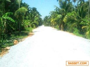 ขายที่ดินสวนมะพร้าวพุทธมลฑล สาย7 อำเภอสามพราน เนื้อที่ 6-2-3 ไร่  หน้ากว้างติดถนนสาธารณะ 140 เมตร ที่ดินห่างจากถนนพุทธมลฑลสาย7 ประมาณ 500 เมตร ห่างจากถนนพระปิ่นเกล้า บรมราชชนนี 2.6 กม ห่างจากถนนเพชรเกษม 2.2 กม.