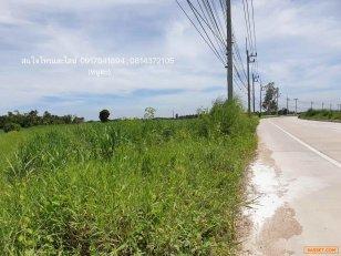 ขายที่ดินชลบุรี  เนื้อที่ 61 ไร่ 1 งาน  64 ตารางวา (พื้นที่สีเหลือง  ที่ดินประเภทที่อยู่อาศัยหนาแน่นน้อย)