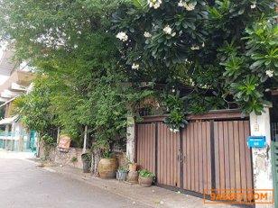 ขายที่ดินด่วน ซอยปรีดี 20 สุขุมวิท 71 เหมาะสร้างบ้าน เก็งกำไร Land For Sale Soi Pridi 20 Sukhumvit 71 Good for Investment