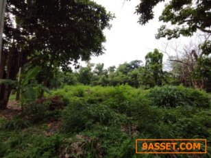 ขาย  ที่ดิน หมู่บ้านนวธานี หมู่บ้านนวธานี 2งาน 74ตรว  แปลงมุม