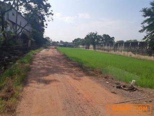 ขาย ที่ดิน ถ.ดาวทอง ศาลายา 907 ตรว เหมาะสร้างสร้างบ้าน จัดสรรขาย โกดัง โรงงาน