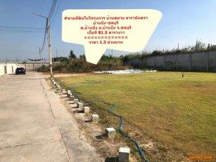 ขายที่ดินบ้านบึง-ชลบุรี #โครงการบ้านสยาม ธารามันตรา