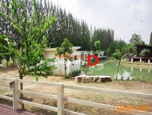 ขายให้เช่า รีสอร์ท รายวัน รายเดือน Resort LakePine วิวเขาใหญ่อากาศธรรมชาติ นครราชสีมา ปากช่อง ขนงพระ
