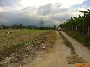 ขายที่ดินเขาใหญ่ ติดถนนในซอย #บ้านคลองหินลาด #เขาใหญ่ปากช่อง