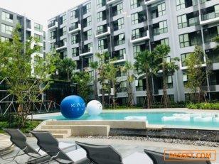 CM03601 ขายดาวน์ คอนโด เคฟ ทาวน์ สเปซ รังสิตม.กรุงเทพ Kave Town Space Rangsit-BU คอนโดมิเนียม ถนนพหลโยธิน