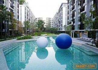 ขาย ให้เช่า คอนโด Kave Town Space (เคฟ ทาวน์ สเปซ) รังสิต - ม.กรุงเทพ