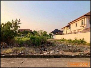 ขายที่ดินแปลงสวย ม.วริยาวิลล์ ศาลายา ทำเลดี เดินทางสะดวก เหมาะแก่การสร้างบ้าน ในอำเภอพุทธมณฑล นครปฐม