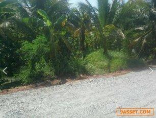 ขายที่ดิน 6 ไร่กว่า ตำบลหอมเกร็ด อำเภอสามพราน นครปฐม มีมะพร้าวเต็มสวน  ใกล้วัดหอมเกร็ด