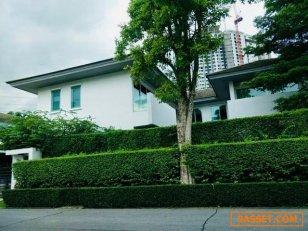 ขาย หรือเช่า บ้านเดี่ยวหลังใหญ่ ติดถนนใหญ่ ณ บ้านกลางเมือง