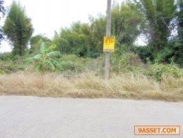 22403 ขายที่ดินน้ำดิบ ป่าซาง ลำพูน Land for Sale, NamDip, PaSang, Lamphun, THAILAND