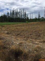 ขายที่ดินพร้อมบ้าน รวม 2 แปลง 33 ไร่ อำเภอเมือง จังหวัดราชบุรี