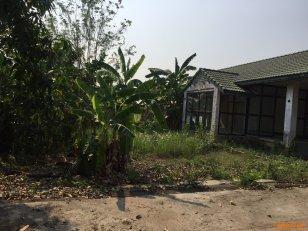 ขายที่ดินเนื้อที่ 134 ตารางวา พร้อมสิ่งปลูกสร้าง อ.ปากเกร็ด จ.นนทบุรี