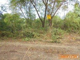 22405 ที่ดินใกล้เทศบาลแม่ก๊า สันป่าตอง เชียงใหม่ Land MaeKa Sanpatong Chaingmai THAILAND