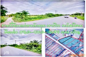 ขายที่ดินแปลงหัวมุม ที่ดินติดถนนทางหลวงพนัส-เกาะโพธิ์ ไม่มีประวัตินํ้าท่วม นาเริก พนัสนิคม ชลบุรี